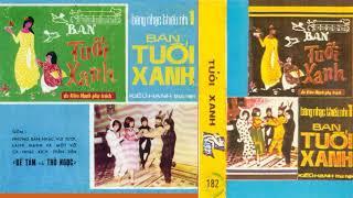 Phương Mai -  Một Đàn Chim Nhỏ -  Nhạc Thiếu Nhi Thu Âm Trước 1975