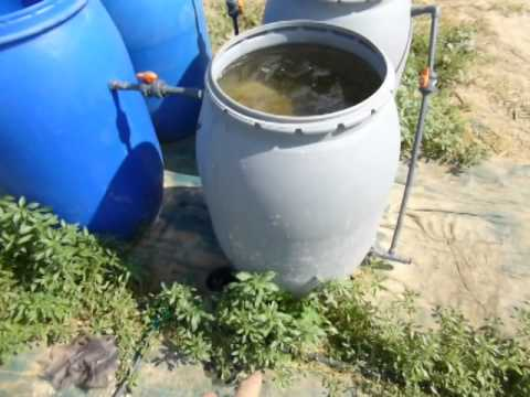 DIY Biosand/Biochar Water Purification System
