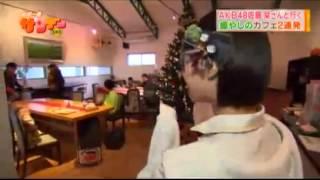 2014年11月23日(日)『新潟一番サンデープラス』佐藤栞里さん出演箇所の...