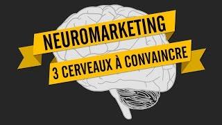 NEUROMARKETING: 3 CERVEAUX À CONVAINCRE