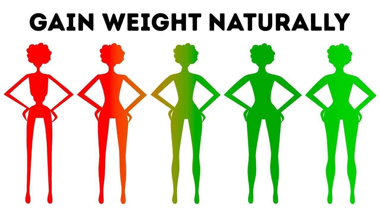 Diet plan to gain weight for skinny girl