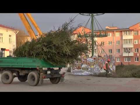 В Лиде до следующей зимы убрали елки