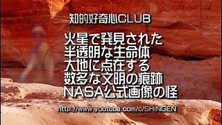火星で発見された半透明な生命体 大地に点在する文明の痕跡 NASAの火星探査車から送信されたリアルマーズ画像 331