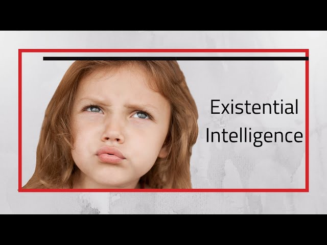 Existential Intelligence, Existential Learners