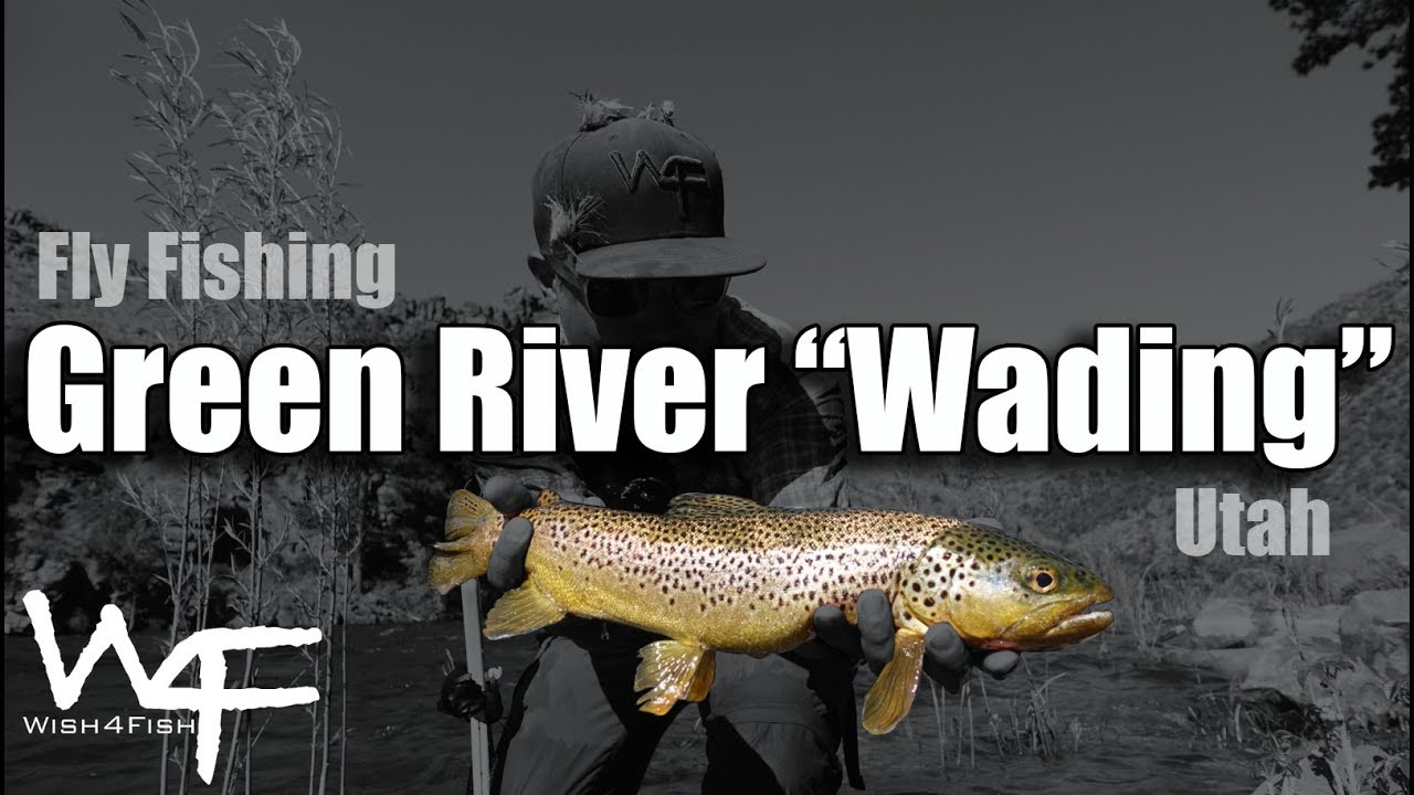 Utah Fly Fishing · DIY Fly Fishing