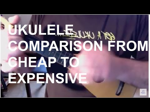 Ukulele comparison - a beginners guide from cheap to expensive