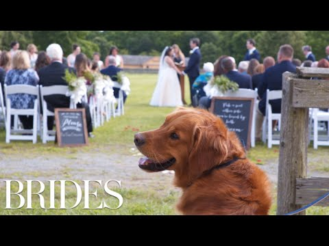 This Woman Will Walk Your Dog Down the Aisle At Your Wedding | BRIDES