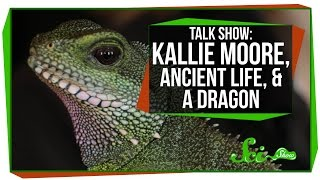 SciShow Talk Show: Kallie Moore, Ancient Life, And A Dragon