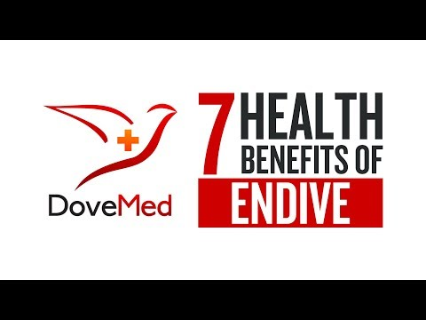 7 Health Benefits Of Endive