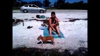 This Video Previously Contained A Copyrighted Audio Track. Due To A Claim By A Copyright Holder, The Audio Track Has Been Muted.     Sally At The Beach