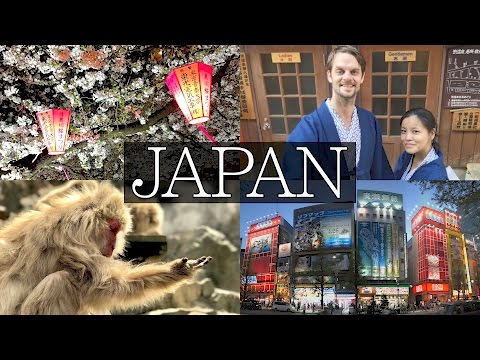 14 Days in Japan - Ultimate Vlog: Tokyo, Hakone, Mount Fuji,