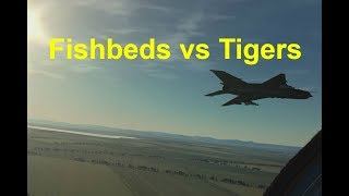 Ralfi's Alley - Fishbeds vs Tigers