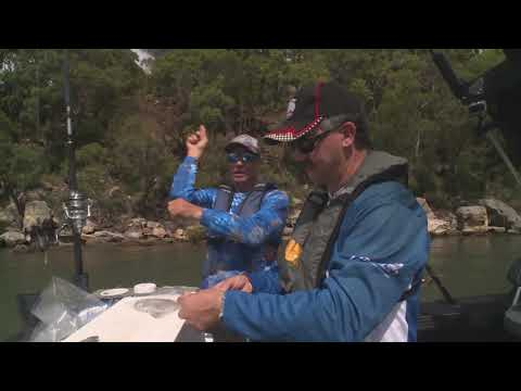 SQUID BAITS FOR MULLOWAY | ESCAPE FISHING WITH ET