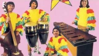 Señor Coconut - Baile alemán