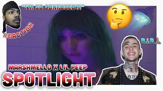Video Marshmello X LiL Peep - SpotLight (Reaction) download MP3, 3GP, MP4, WEBM, AVI, FLV Juli 2018
