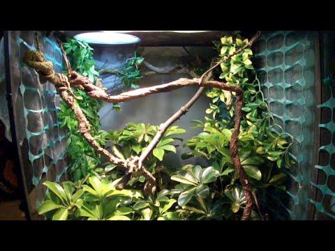 Beginner S Guide To Chameleon Nylon Vs Screen Vs Gl