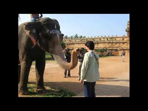 Most beautiful view - Brihadishwara Temple - India