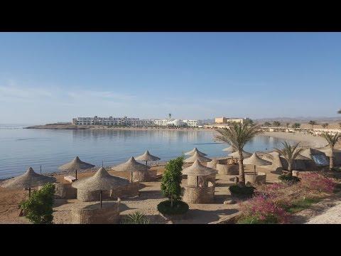 Coral Garden, Safaga, Ägypten