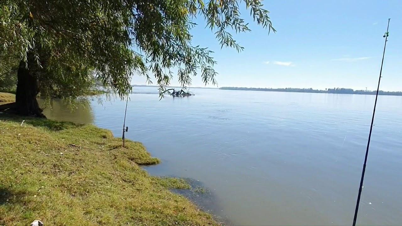 Pescuit la Dunare, Cetate, sfarsit de octombrie, cote foarte mari si apa increstere.