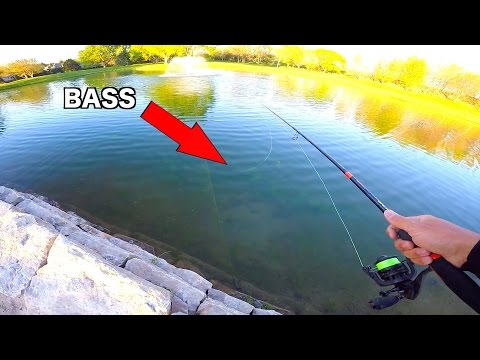 CLEAR WATER Golf Course Pond Fishing Challenge - MTB SLAM