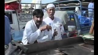 Nitipoom Navaratna นิติภูมิ นวรัตน์ in Dubai part 2 (4/5)