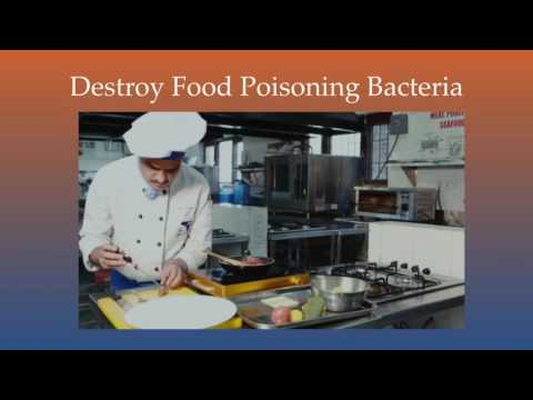 Lecture One, Basic Food Safety