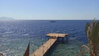 Шарм Эль Шейх 2020 пляж отеля Jolie Ville Golf Resort 5 06 08 2020