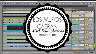Los Muros Caeran (Miel San Marcos) Multitrack