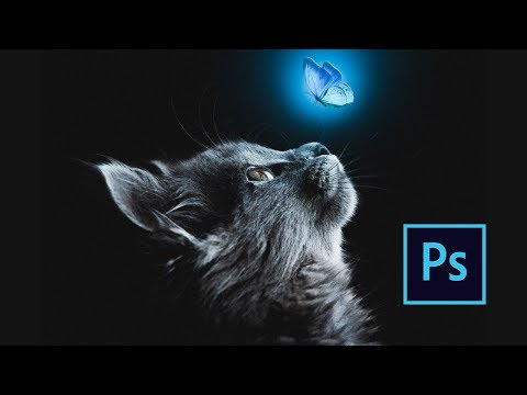 Photoshop Manipulation Tutorial - Cat And Blue Butterfly - Fine Art Scene thumbnail