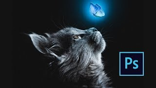 Photoshop Manipulation Tutorial - Cat And Blue Butterfly - Fine Art Scene