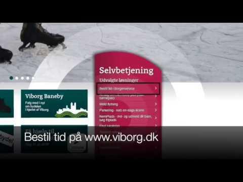 viborg kommune pas
