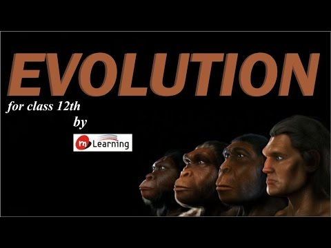 Evolution - 01 For Class 12th and AIPMT