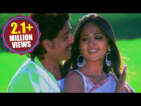 Don Songs - Neekai Nenu - Nagarjuna Anushka Ragava Larencce