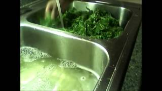 {52} Soul Food: How To Cook Mustard Greens Tutorial Step By Step
