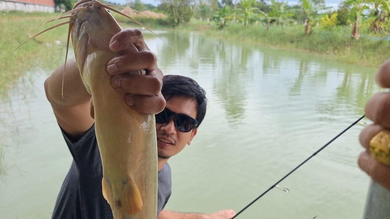 ปลาตัวใหญ่มาก บรรยากาศอบอุ่นที่โคกหนองนา #บ่าวนิพล #บ่าวเอ
