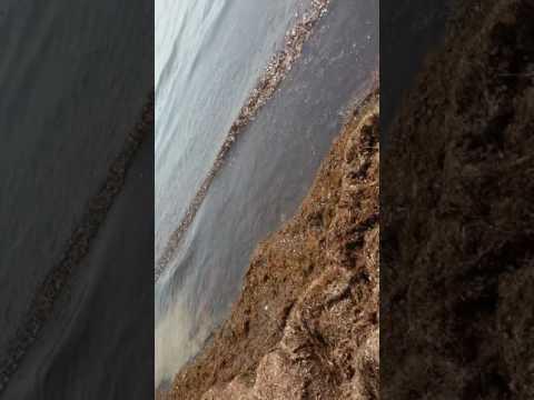 na plaj v Sarafovo 😛