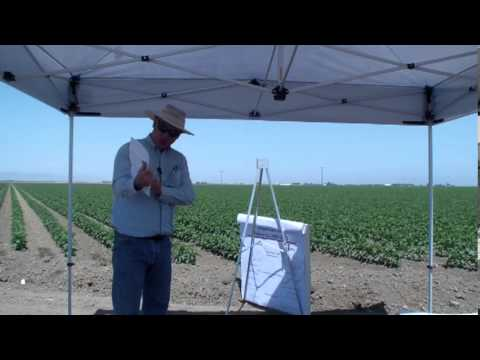 Cotton Production Risks in Low Water Years- Dan Munk