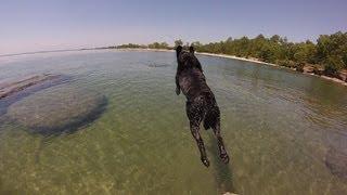 slow motion, fast forward beach day swimming - GoPro Hero 3