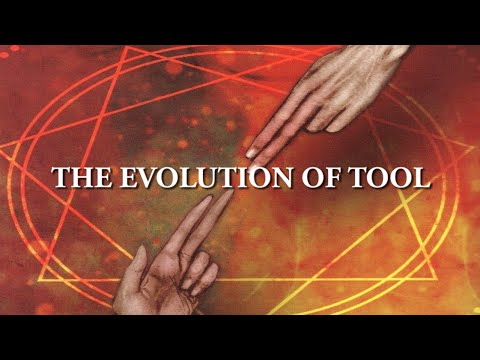 The Evolution of Tool