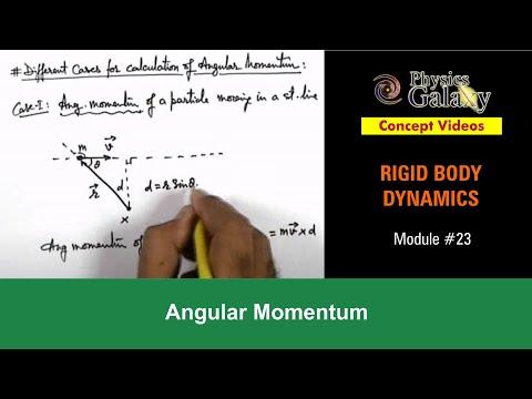 23. Class 11th Physics | Rigid Body Dynamics | Angular Momentum | by Ashish Arora