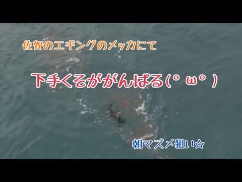 【エギング】佐賀県某漁港にて【アオリイカ】