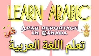 Learn Arabic| arab reportage in Canada| تعلم اللغة العربية | Ananas channel