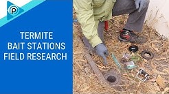 Termite Bait Stations Field Research (episode 113)