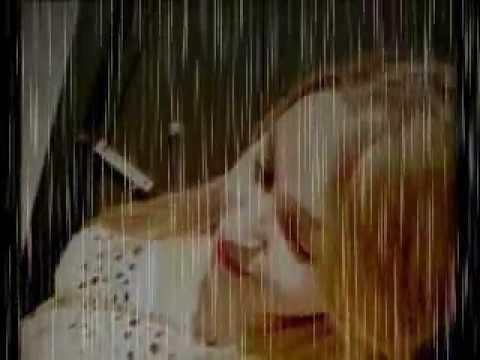 ♫ ♪  Miss ELif  FT  CiqqS TKiyy  [  KahBe Kader  ]   -  2oı2  ♫ ♪