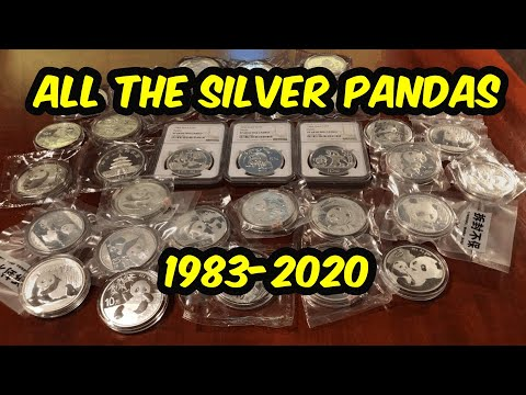 Complete Silver Panda Coin Review, Coin Collector And Silver Stacking Guide