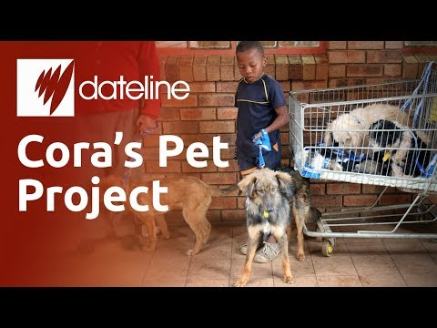 Cora's Pet Project: Healing South Africa, one animal at a time