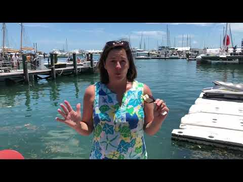 Weather Report - Key West, Florida 6/3/18