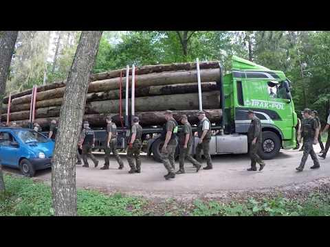 Blokada Tira z drewnem z wycinki Puszczy Białowieskej