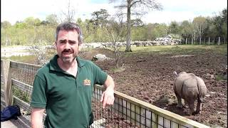 Indian Rhino Questions with Ranger John