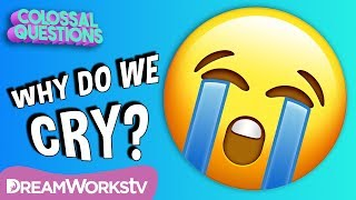 Why Do We Cry? | COLOSSAL QUESTIONS